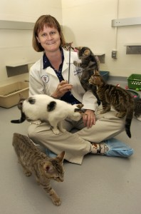 Dr. Julie Levy with cats