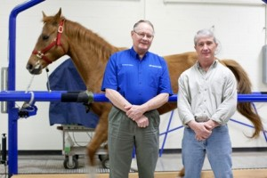 Steven Ghivizzani, Ph.D., and Patrick T. Colahan, DVM, DACVS, observe a horse's gait at the University of Florida's Large Animal Hospital. (Photo by Jesse Jones/University of Florida)