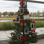 Holiday tree in primary care area