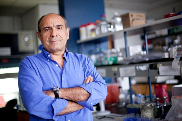 Dr. Mansour Mohamadzadeh, shown in his laboratory, has shown that a bacterial treatment has a major impact on colon cancer.