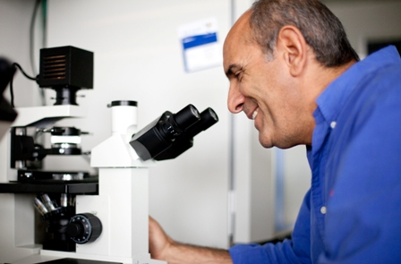 Mutant Gut Bacteria Can Reverse Colon Cancer Uf Researchers Find The Veterinary Page College Of Veterinary Medicine University Of Florida