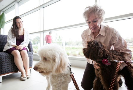 Mocha, at right, with her family dog companion, Mollie, and her breeder and original owner, Joan Standlee, on Jan. 16. UF veterinary student Kyle Donnelly, at left, was one of the students who helped care for Mocha. (Photo by Maria Farias)