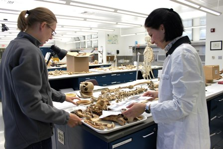 A UF graduate student and Dr. Nanny Wenslow discuss a set of animal remains.