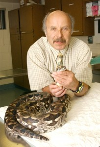 Dr. Jacobson with Dumeril's ground boa