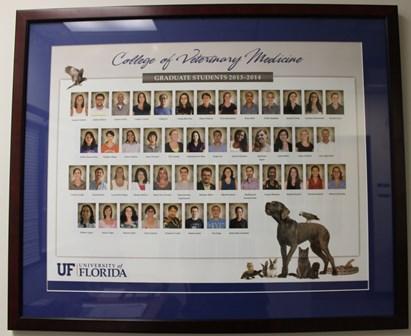 Graduate student photo composite