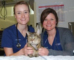 Dr. Ashley Allen and  intern