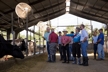 UF veterinarians and Dr. Geoff Dahl from IFAS showed Dr. Grandin around the facilities.